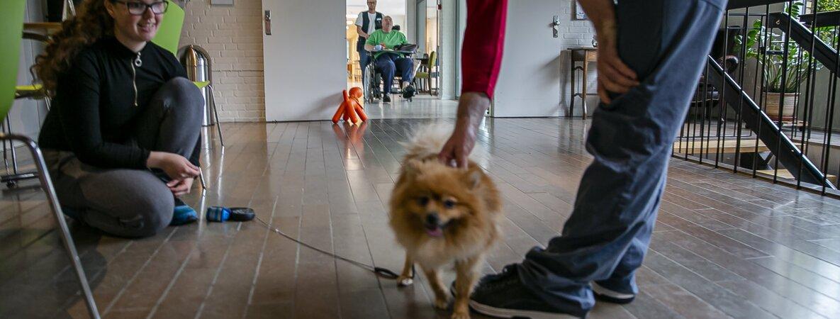 Besuchsverbot Pflegeheim